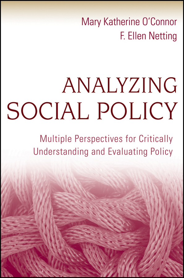 social policy analysis essay